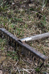 Hello spring. Cleaning the garden. Metal rake on the grass.