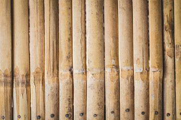 Dry bamboo flooring pattern, plant, rough, round, rustic, shabby, stick, texture