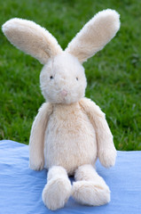 Stuffed bunny on blanket in garden