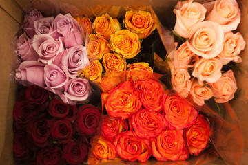 many bouquets of roses