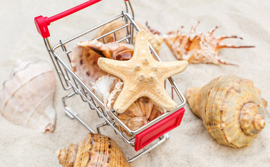 Shopping cart with seashells on the sand. Vacation concept.