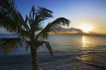 Caribbean, Puerto Rico, Vieques. Sunset at Green Beach.