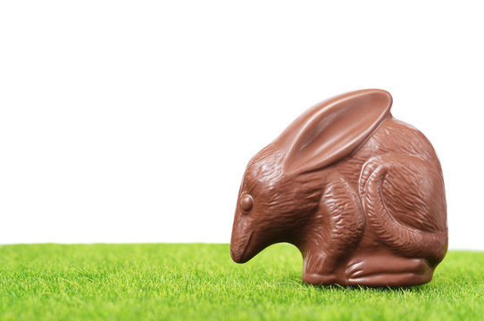 Chocolate Easter bilby against a white background. Australian Easter concept.