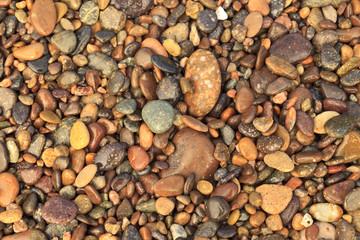 Cabo Pulmo, Los Cabos area, Baja California, Mexico. Close-up of rocks on the beach.