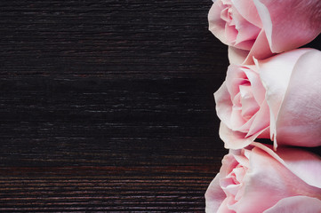 Three Roses Aligned Right