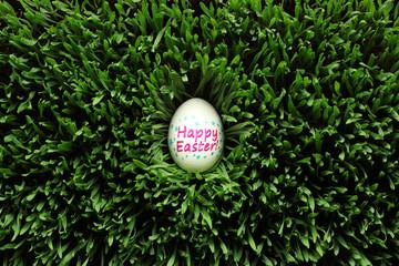 Single Happy Easter egg hidden in grass