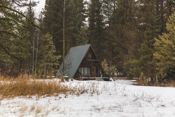 A-Frame Cabin in Forest Area