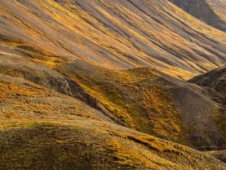 Rugged Landscape in Iceland