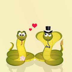 snakes couple in love