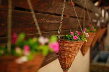 Hanging flower pots as decoration