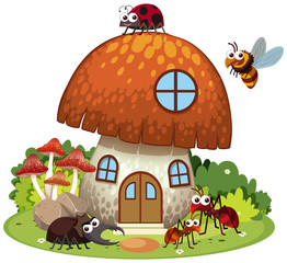 Many insects living in mushroom house