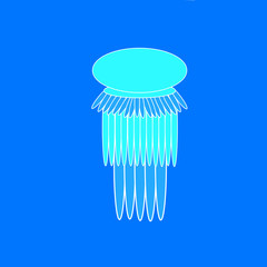 Jellyfish on the blue background