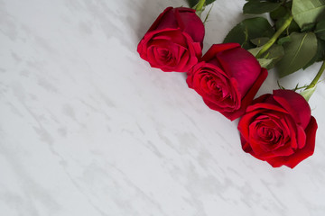 Three beautiful red roses on a marble table.