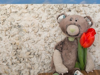 Teddy bear with red tulip, 8 march greeting card