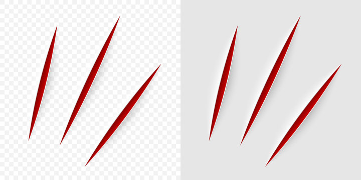 Vector realistic red cut with a office knife