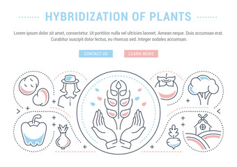Website Banner and Landing Page of Hybridization of Plants.
