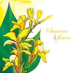 Vector bouquet of outline yellow Canna lily or Canna. Flower bunch, bud and leaf isolated on pastel background. Corner composition in contour style with ornate tropical flower for summer design.