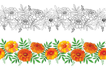 Vector seamless pattern with outline Tagetes or Marigold flower and leaf in orange and black on the white background. Floral horizontal border in contour style with ornate Marigold for summer design.