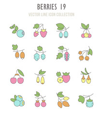 Set of Retro Icons of Berries.