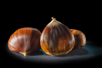 Still life of some chestnuts on a black background.