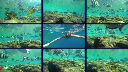 Wall Mural - collage, girl and snorkeling on sea