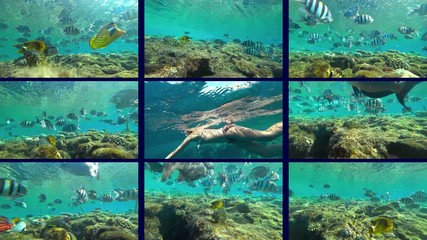 Wall Mural - girl teen swims under the water