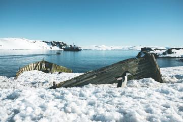 Ship Wreck and Adeliepenguin - Antarctica