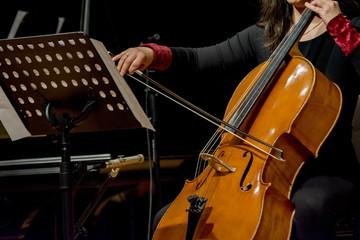 woman plays cello
