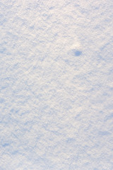 Beautiful texture of fresh snow. Blank white background . Place for text.