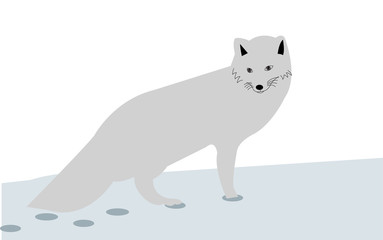 Arctic fox in the snow cartoon illustration