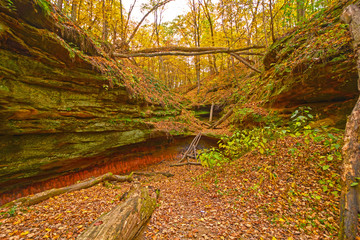 Hidden Canyon in the Fall Forest