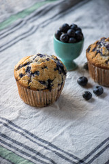 homemade blueberry muffins on white tablecloth