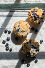 homemade blueberry muffins on white tablecloth in sunlight with window shadow lines top view