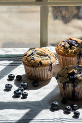 homemade blueberry muffins on white tablecloth in sunlight with window shadow lines