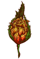 hand drawn yellow rosebud with leaves. fiery rose. orange flower isolated on background.