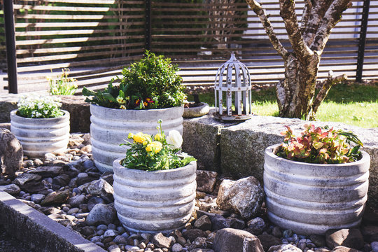 Stone garden arrangement with spring flowers in large concrete plant pots and decorative bird cage and bird bath details