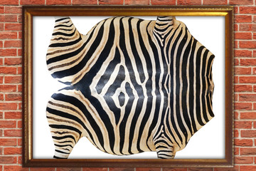 Zebra skin in the frame on the wall. 3D rendering.