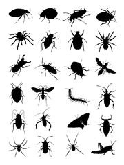 Bugs silhouette. Good use for symbol, logo, web icon, mascot, sign, or any design you want.