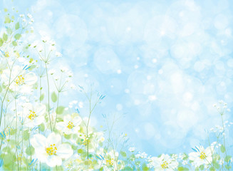 Vector beautiful  floral background, white flowers and green plants on blue bokeh background.