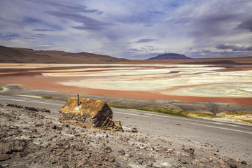 Laguna Colorada, Altiplano, Bolivia