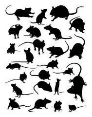 Mouse silhouette. Good use for symbol, logo, web icon, mascot, sign, or any design you want.