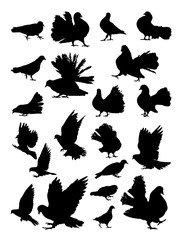 Pigeons silhouette. Good use for symbol, logo, web icon, mascot, sign, or any design you want.