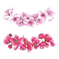 Hand drawn watercolor bouquets with pink sakura flowers set.