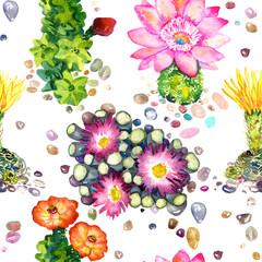 Cactus with pink and yellow flowers, colorful stones, seamless pattern design, hand painted watercolor illustration, white background