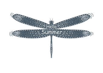 Hello summer ,flying dragonfly