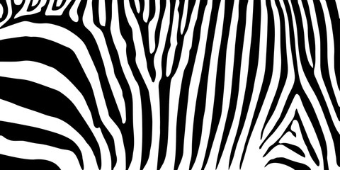 Print stripe animal jungle texture zebra vector black white