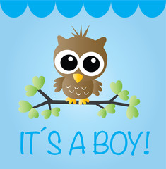 newborn baby boy announcement