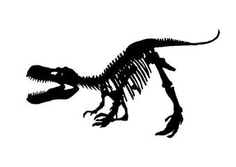 tyrannosaurus rex skeleton fossil, isolated dinosaur vector illustration on white background