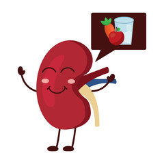 cartoon happy human kidney with speech bubble healthy food vector illustration