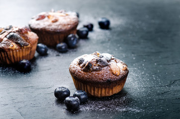 Fresh, blueberry muffins on a stone background with sugar and fruits. Food background. Concept of pastry.